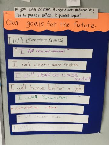 learning-goals