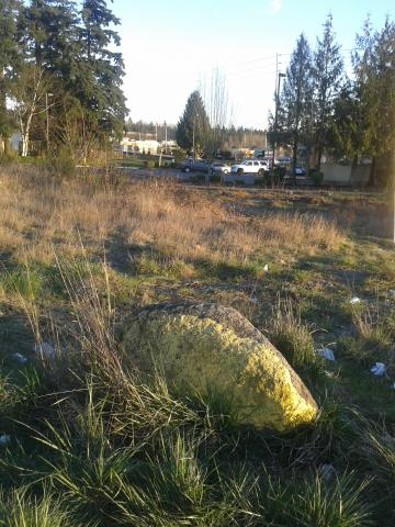 mossy rock in grassy area behind parking lot