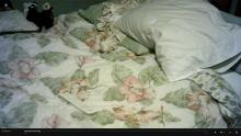 pillow and comforter on bed