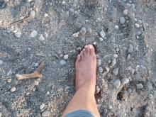 Bare foot in sand